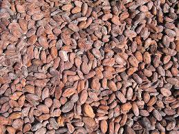 Cameroon Cocoa
