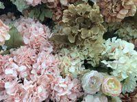 цветы: лучшие изображения (79) | Цветы, Красивые цветы и ...