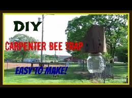 How To Make A Carpenter <b>Bee Trap</b> - YouTube