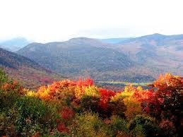 <b>Autumn</b> - Wikipedia