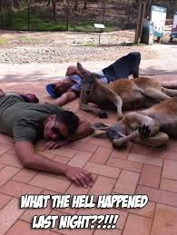 What the hell happened last night - Memes Comix Funny Pix via Relatably.com