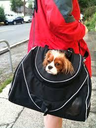 Small <b>Dog Carrier Messenger</b> Bag | SCALE