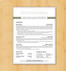 Resume Writing   Resume Design  Custom Resume Writing  amp  Design Service   Modern Design   Pinterest