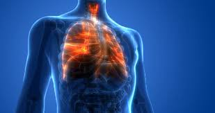 Outbreak of Lung Injury Associated with the Use of <b>E</b>-<b>Cigarette</b>, or ...