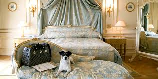 Πού μπορώ να μείνω με τον σκύλο μου στο Παρίσι;