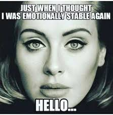 Adele Meme on Pinterest | Adele Tickets, Adele Without Makeup and ... via Relatably.com