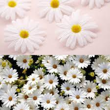 <b>daisy</b> house — международная подборка {keyword} в категории ...