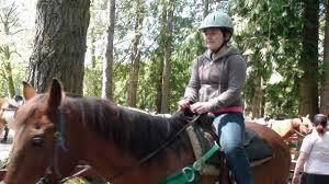 lang s horse and pony farm s horseback riding lang s horse and pony farm s horseback riding