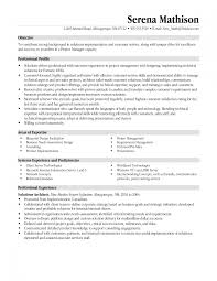 how to write an excellent resume business insider professional resume examples resume objectives for managers solution professional profile section on resume professional profile on resume