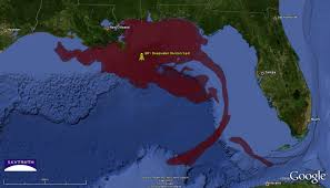 viewing every reality the death of the gulf of the suspects in it s murder it s impacts on gulf coast people business