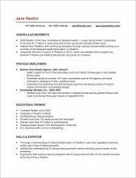 Professional Cv Pdf Format Sample Resume Format Pdf