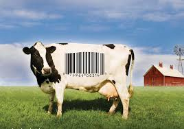 food inc discussion guide org