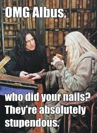 They're stupendous! | Harry Potter, Harry Potter Memes and Harry ... via Relatably.com