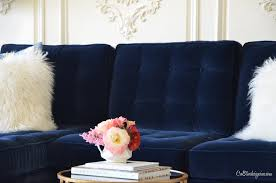 room ideas navy blue sofa couches  amazing navy blue tufted sofa cretive designs inc for navy sofa