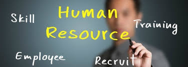 job brief hr consultant job description