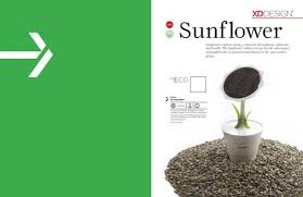 Sunflowers radiate energy, represent cheerfulness ... - publiflex.pt