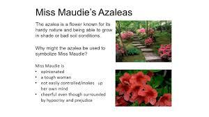 flower symbolism tkam flower symbolism in tkam miss maudie s 3 miss