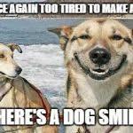 Original Stoner Dog Meme Generator - Imgflip via Relatably.com