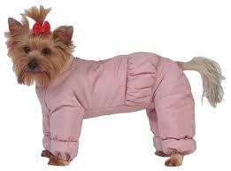 Купить <b>комбинезон</b> для собак <b>ТУЗИК Йоркширский</b> терьер ...