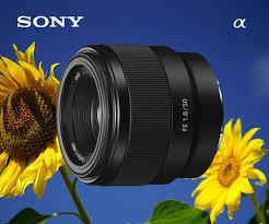 Обзор и тест <b>объектива Sony</b> FE 50mm f/1.8