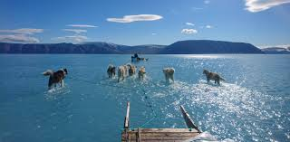 Time will tell if this is a record <b>summer</b> for Greenland ice melt, but the ...