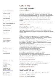 s cv template   s cv  account manager   s rep  cv    marketing assistant cv