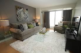 decoration amazing living room decorating ideas glamorous decorated