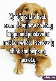 Image result for how to stay happy
