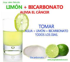 Resultado de imagen para Plantas de limon