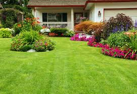 Image result for home gardens