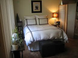 One Bedroom Apartments Decorating One Bedroom Apartment Decorating Ideas Galacticempirewarscom