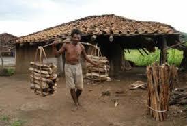 Particularly Vulnerable <b>Tribal</b> Groups — Vikaspedia