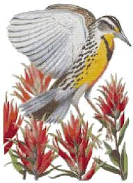 Wyoming State Bird and Flower Western <b>Meadowlark</b> and Indian ...