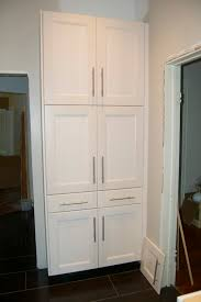 Kitchen Pantries Makes Comeback Kitchen Pantry Ikea Design Idea And Decor