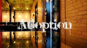 essay on the basis and purposes of adoption