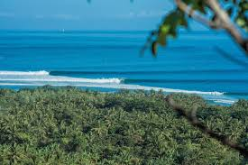 <b>Surf</b> Reports, <b>Surf</b> Forecasts and <b>Surfing</b> Photos - Magicseaweed.com