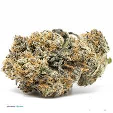 Buy Northern Goddess | <b>Grade AAAAA</b> Weed
