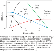 cv physiology pathophysiology of heart failure integration of cardiac and vascular changes