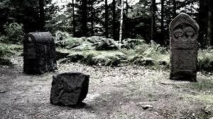 """Résultat de recherche d'images pour """"camp celtique de la bure"""""""