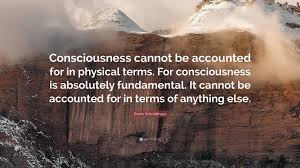 Image result for consciousness is fundamental