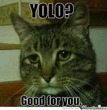 Sad Cat by eryt2 - Meme Center via Relatably.com