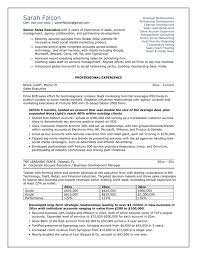 professional resume example sample resumes for professionals    professional resume imahhno
