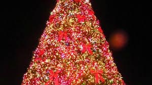 Myrtle Beach SC Best Christmas Events | MyrtleBeachLife.com ...