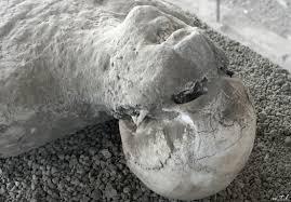 pompeii disaster에 대한 이미지 검색결과