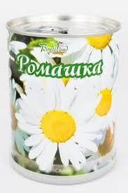 <b>Ромашка</b> аптечная <b>Bontiland растение</b> в банке, (77002) в Алматы ...