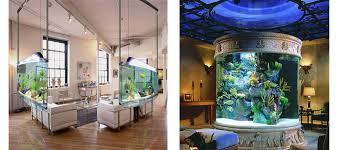 aquarium rental and maintenance business aquarium office