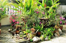 Small Picture tropical garden design uk Margarite gardens