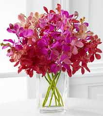 day orchid decor: tickled pink orchid bouquet  stems vase included
