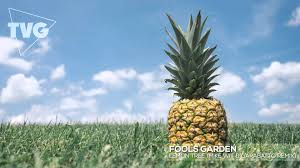 lemon tree x: fools garden lemon tree mike wit amp garabatto remix
