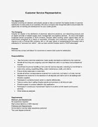 customer service essay template customer service essay